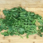 ¿Te gusta el cilantro?