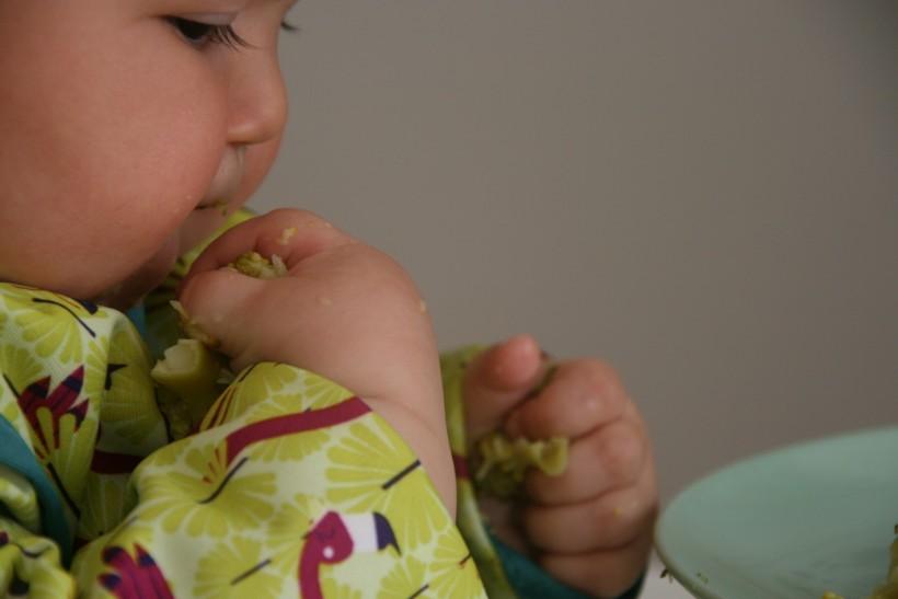 Baby-led weaning (BLW) o alimentación autorregulada por el bebé