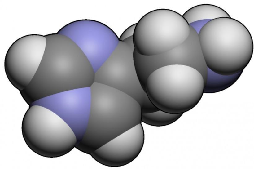 Intolerancia a la histamina